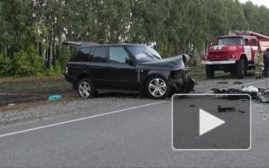 Видео с места аварии: В Тамбовской области в лобовом ДТП погибли двое взрослых и 4-летний ребенок