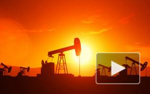 Трамп просил Эр-Рияд не опускать цены на нефть до опасного уровня