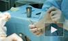 В России людям начнут пересаживать органы от животных