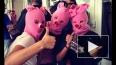 «Хрюши» показали видео своего панк-молебна