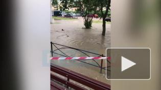 """""""Новый прорыв"""":в Калининском районе потопиз-за дырявой трубы"""