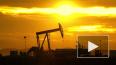 Лукашенко объяснил сложность переговоров по нефти
