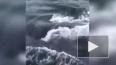 Видео: Отважный рыбак запрыгнул на спину кита, чтобы ...