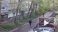 Кража мобильного телефона на Дыбенко попала на видео
