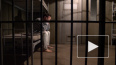 В России за последние 20 лет заключенных стало в два раз...