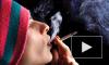 Запрещенные курительные смеси с доставкой на дом