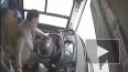 Жесткое видео из Китая: Из-за драки женщины и водителя ...