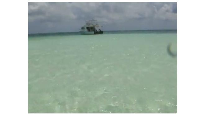 Морское путешествие по Карибскому морю