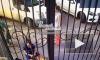 Видео: в Ростове-на-Дону фельдшер пнул ногой выпившую пенсионерку