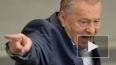 Жириновский грубо обругал Плющенко за решение сняться ...