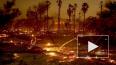 """""""Калифорния в огне"""": Число жертв пожара возросло до 66 ч..."""