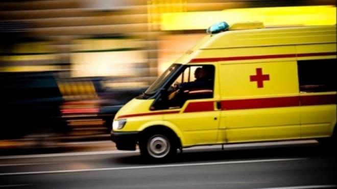 Жертвами столкновения автобуса и самосвала под Петербургом стали пять человек