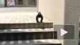 """В сети появилось видео с мускулистой вороной-""""гориллой"""""""