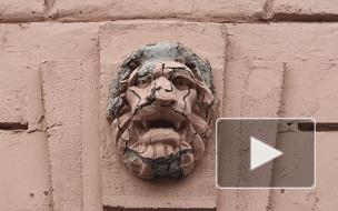 Жители Васильевского острова ужаснулись реставрацией львов на доходном доме