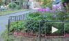 Изуродованный труп женщины с проломленным черепом нашли во дворе дома на Лавочника
