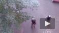 Боевик убит, спецназовец ранен в ходе спецоперации ...
