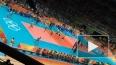 Нервы подвели: сборная России по волейболу проиграла ...