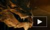 """Фильм """"Хоббит: Пустошь Смауга"""" (2013) режиссера Питера Джексона сдает позиции"""