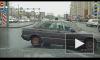 Появилось видео, где петербуржец спасает котенка на дороге под грустную музыку