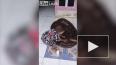 Видео: маленький мальчик обнимается с питоном