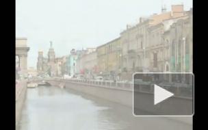 Петербург – город нетерпимости. На Малой Садовой избили бездомную
