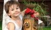 В убийстве 5-летнего Богдана Прахова подозревают психбольного