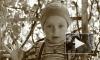 В Брянске выносят приговор «кисочке», задавившей на переходе трехлетнюю девочку