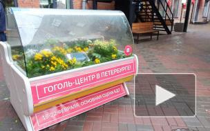 """В Бертгольд-центре установили морозильную камеру с """"маленькими трагедиями"""" петербуржцев"""
