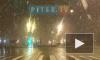 Видео: в ночь на вторник Петербург замело мокрым снегом