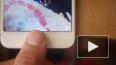 В сети выложена песня с обращением к Apple, которая ...