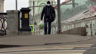 В минувшие сутки в России выявлено 500 случаев заражения коронавирусом