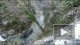В Абхазии БТР с российскими военными рухнул в ущелье