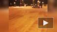 В Новом Петергофе ночью полиция оцепляла вокзал и ...
