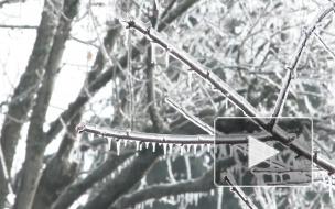 Синоптики предупредили о резком похолодании в центре России