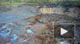 Видео: во Владимирской области целое озеро с рыбой ...