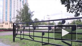 В Петербурге озвучили мелодию с забора в сквере Цоя