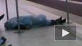 Петербуржец упал замертво рядом с кассами на станции ...