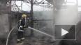 МЧС опубликовало свое видео тушения пожара в Мурино