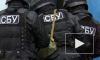 Новости Украины: СБУ разыскивает партизан-коммунистов – местные СМИ