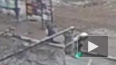 Видео: мужчина провалился под землю в Ярославле
