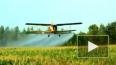 Под Волгоградом разбился легкомоторный самолет, пилот ...