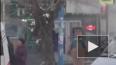 """Доброе видео из Пензы: """"Ёж - тимуровец"""" переводил ..."""
