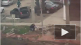 Видео: наглый лысый мужик воровал тротуарную плитку ...