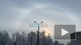 Петербуржцы сняли на видео гало на Васильевском острове
