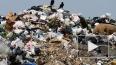 Запрещенная свалка в Шушарах продолжает отравлять почву