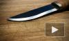 В Ульяновске 15-летний школьник едва не зарезал кухонным ножом учительницу