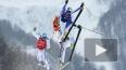 Фристайл, ски-кросс: Французы заняли весь пьедестал ...