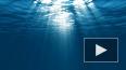 К концу XXI века мировой океан может потерять 4% кислоро...