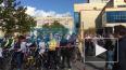 Видео: по Купчино массово проехались велосипедисты
