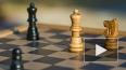 Тренер шахматной секции для детей полгода растлевал ...